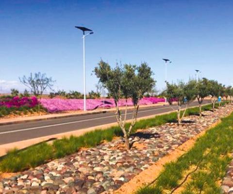 Fonroche : partenaire du Maroc dans les énergies renouvelable